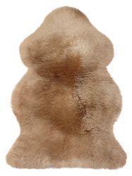 LAMBANAHK 1,0 CAMEL