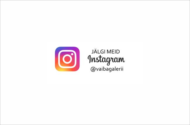 Vaibagalerii nüüd ka Instagramis